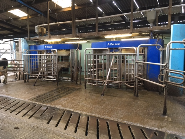 Delaval Vms Used Robot Milking Dairy System